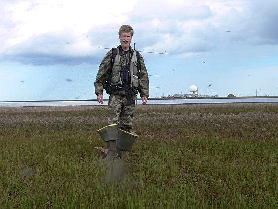 Research in the Arctic can be difficult for a number of reasons. For example, you must accept the fact that a huge number of mosquitos hatch during the short Arctic summer, Barrow, Alaska, 2012 (photo: Vojtěch Kubelka's archive)